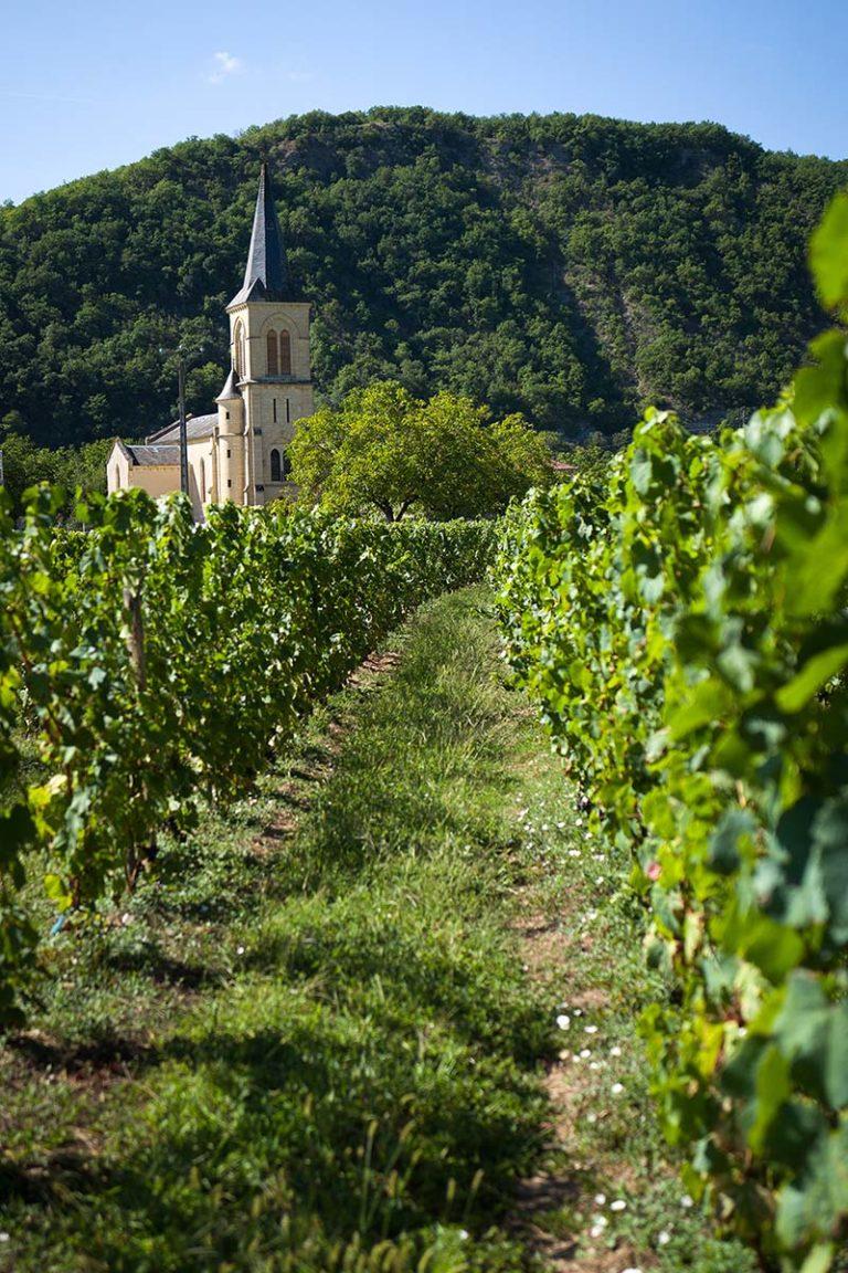 Terroirs-de-la-vallee-Jean-Luc-Exposito-3