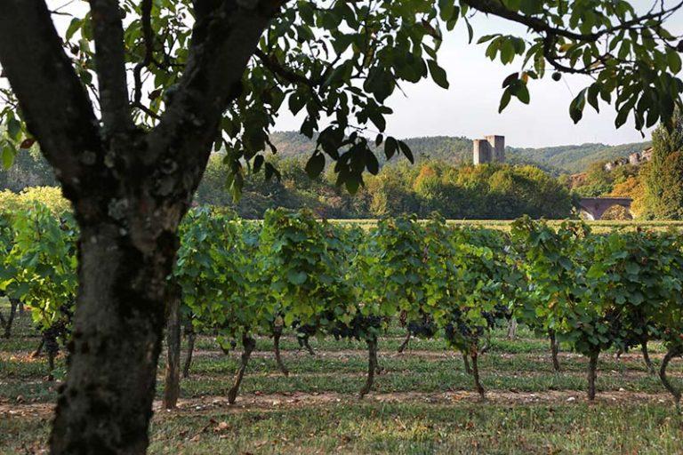 Terroirs-de-la-vallee-Jerome-Morel-2