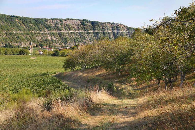 Terroirs-de-la-vallee-Jerome-Morel-3